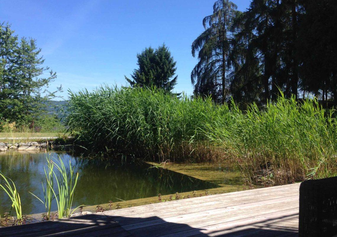 Ferienpark Hesselhof - Ferienwohnungen und Wellnessanlage in Rimbach, Odenwald (Foto 04)